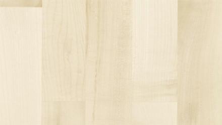 Parador Parkett Basic 11-5 Bergahorn lackversiegelt matt weiß
