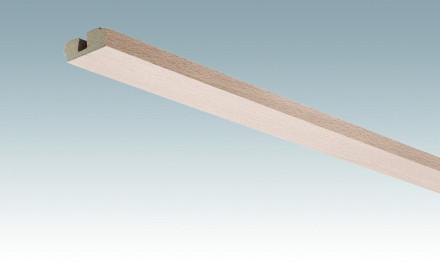 MEISTER Sockelleisten Deckenabschlussleisten Buche pure 4094 - 2380 x 40 x 15 mm