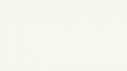 Vinyltapete weiß Modern Uni Black & White 317