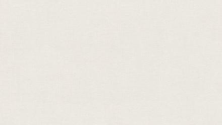 Vliestapete grau Modern Uni Black & White 381