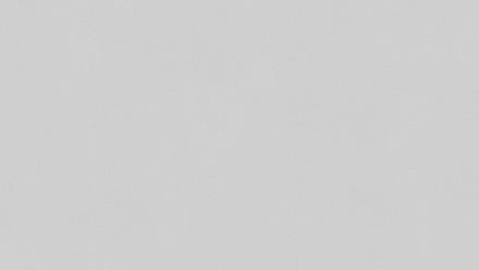Papiertapete grau Modern Klassisch Uni Flavour 942