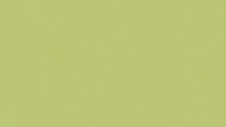 Papiertapete grün Modern Klassisch Uni Flavour 945