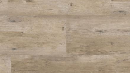 KWG Klebekork - Samoa Sheets Pinie grau antik edelfurniert