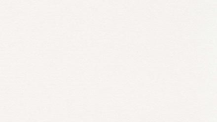 Vinyltapete Strukturtapete weiß Modern Punkte Styleguide Natural Colours 2021 291