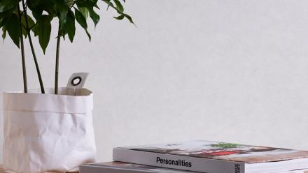 Vliestapete Meistervlies 2020 Architects Paper Unifarben Weiß Überstreichbar 101