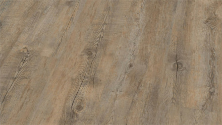 Wineo Vinylboden - Ambra Wood Arizona Oak Grey - Klebevinyl Landhausdiele (1-Stab)