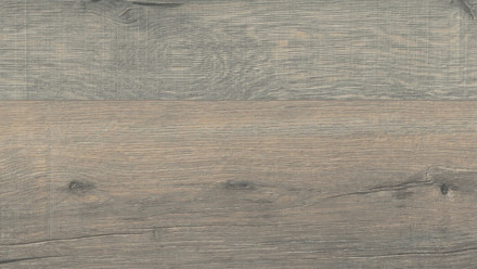 Wineo Laminat - 500 medium V2 Tirol Oak Silver