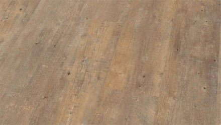 Wineo Vinylboden - Ambra Wood Boston Pine Cream - Klebevinyl Landhausdiele (1-Stab)