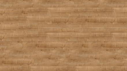 Wineo Bioboden zum Kleben - 1200 wood XL Hello Martha