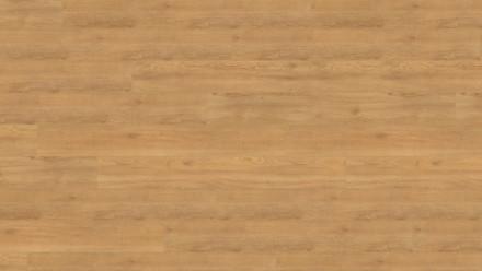 Wineo Bioboden zum Kleben - 1200 wood XL Lets go Max