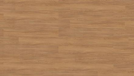 Wicanders Klick-Vinyl - wood Go Honigeiche