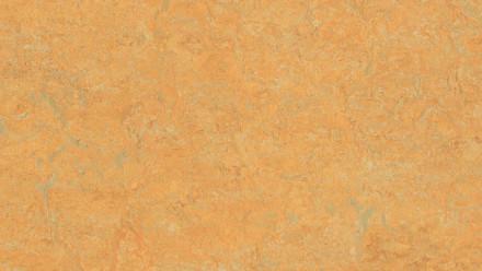 planeo Linoleum Real - golden saffron 3847 2.5