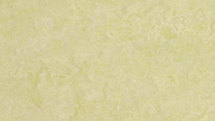 planeo Linoleum Real - green wellness 3881 2.0