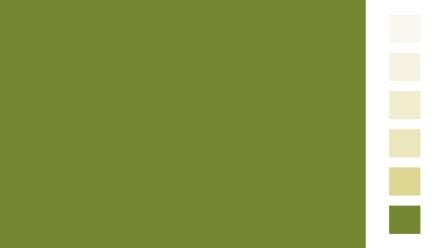 Allcolor Frühlingsgrün Vollton- und Abtönfarben 250ml