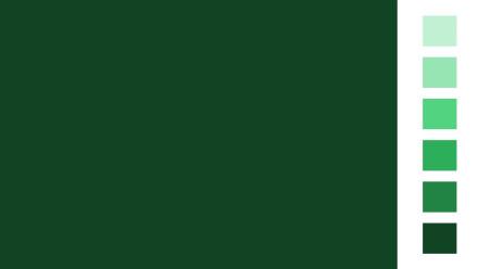 Allcolor Grün Vollton- und Abtönfarben 250ml