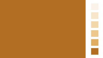 Allcolor Ocker Vollton- und Abtönfarben 250ml