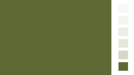 Allcolor Oxidgrün Vollton- und Abtönfarben 250ml