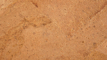 KWG Korkboden zum Kleben - Paco NA 5520 handfurniert