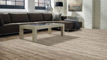 moduleo Vinylboden - MAJOR OAK 53967 - Klebevinyl Landhausdiele