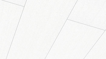 Meister Paneele - Terra DP 250 Fineline weiß 4017