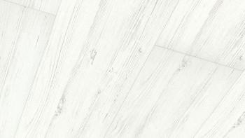 Meister Paneele - Terra DP 250 White Pine 4088