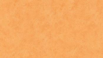 Papiertapete orange Klassisch Uni Boys & Girls 6 828
