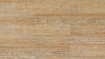 Wicanders Klick-Vinyl - Wood Hydrocork Acardian Soya Pine, synchrongeprägt