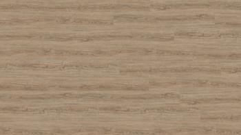 Wineo Vinylboden - 800 wood XL Clay Calm Oak - Klebevinyl Landhausdiele