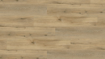 Wineo 400 Klebevinyl - Adventure Oak Rustic