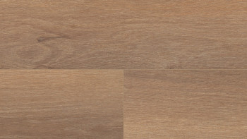 Wineo 500 XXl V4 - Smooth Oak Darkbrown