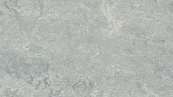 planeo Linoleum Real - dove grey 2621 2.0