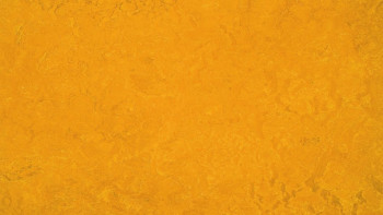 planeo Linoleum Fresco - golden sunset 3125 2.0