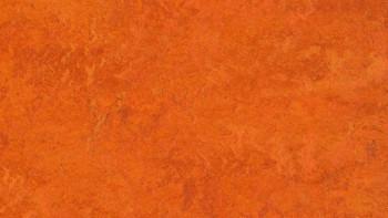 planeo Linoleum Fresco - Kyoto 3126 2.0