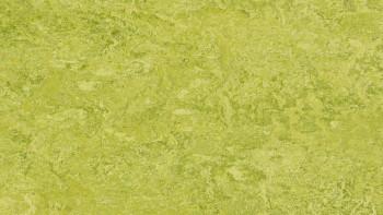planeo Linoleum Real - chartreuse 3224 2.0