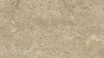 planeo Linoleum Real - forest ground 3234 2.0