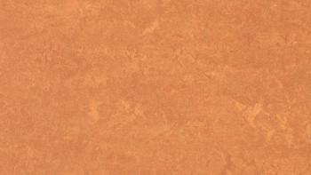 planeo Linoleum Fresco - African desert 3825 2.0