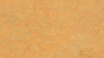 planeo Linoleum Real - golden saffron 3847 2.0