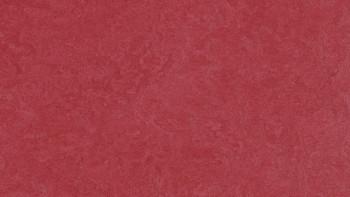 planeo Linoleum Fresco - ruby 3273