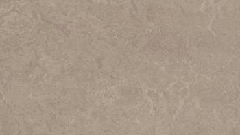 planeo Linoleum Fresco - sparrow 3252 2.0