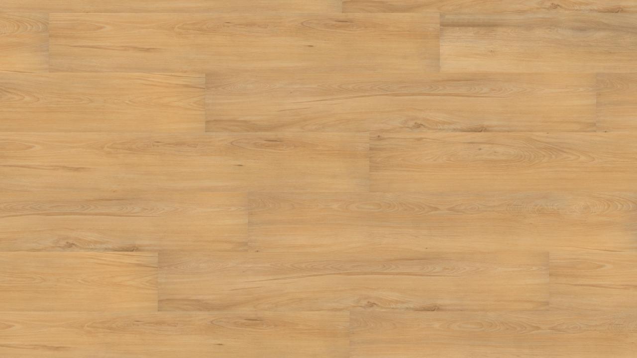 Vinylboden Sonderposten - European Beech - Holz...